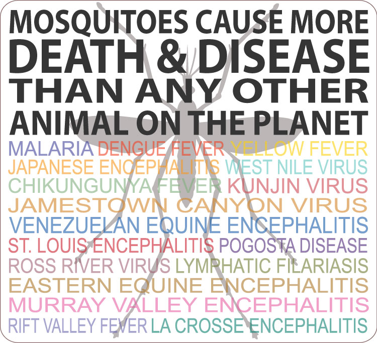 mosquitoes_infographic_lg