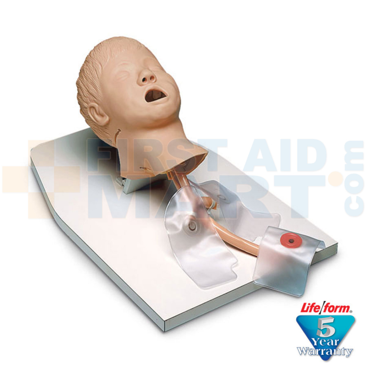 Child / Pediatric Airway Management Trainer on Stand with Case ...