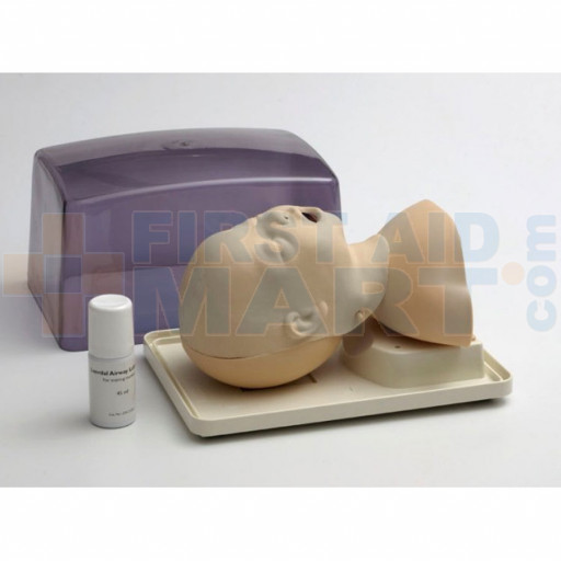 Infant / Baby Airway Management Trainer - LG01070U