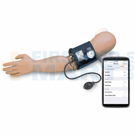 Blood Pressure Arm Simulator - 600