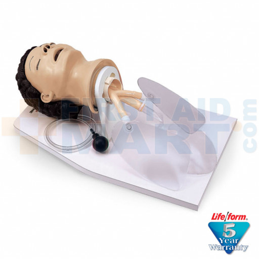 Adult Airway Management Trainer with Stand - LF03601U