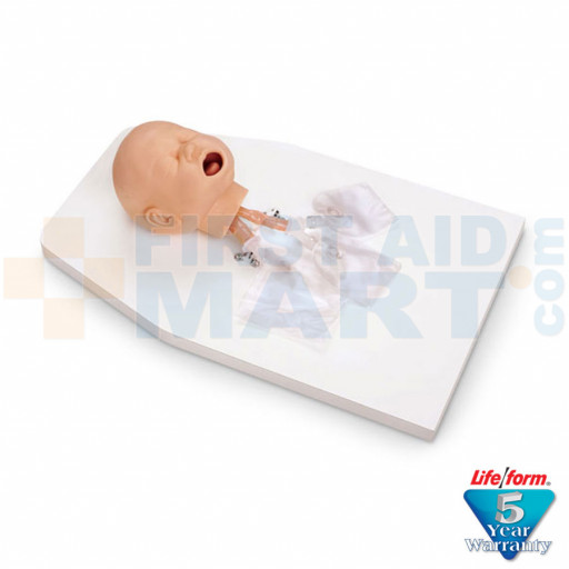 Infant / Baby Airway Management Trainer with Stand - LF03623U