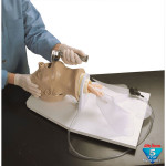 "Adult ""Airway Larry"" Management Trainer w/ Stand - LF03699U"