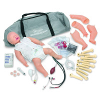 STAT Baby - Training for Life - 350