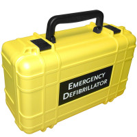 Deluxe Hard Carrying Case - Yellow - DAC-111