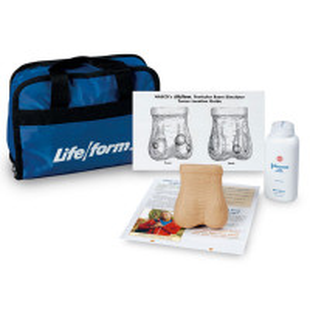 Testicular Exam Simulator - LF01143U