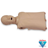 Child / Pediatric CPR/Airway Management Torso - LF03633U