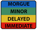 Image of the four stages of Triage: Minor delayed care / can delay up to three hours - Delayed urgent care / can delay up to one hour - Immediate immediate care / life-threatening - Deceased (Morgue) victim is dead or mortally wounded / no care
